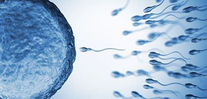 What can cause infertility?